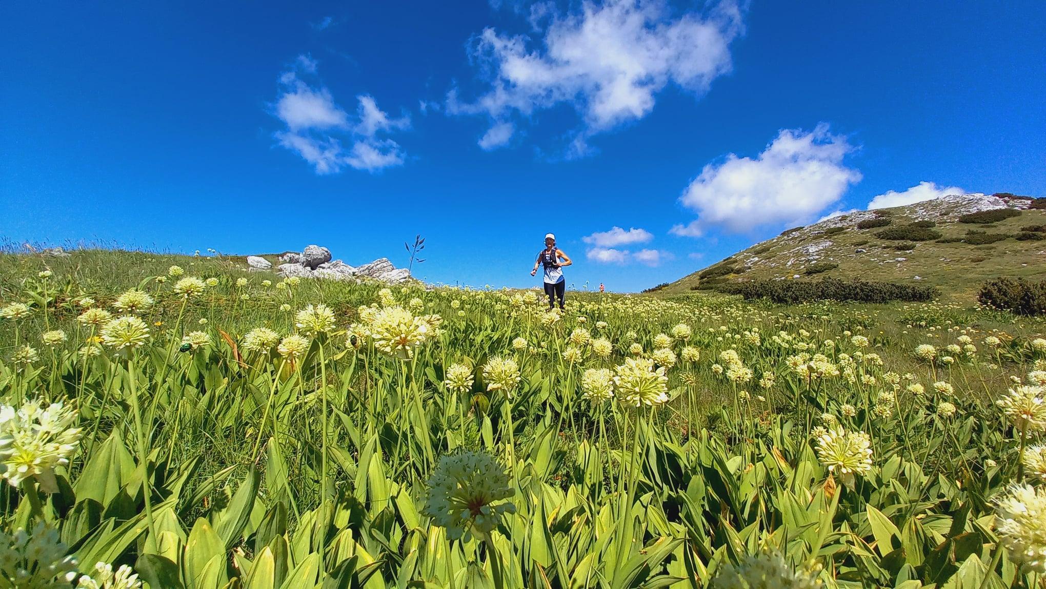Trenutno pregledavate Velebit – Premužićeva staza Video