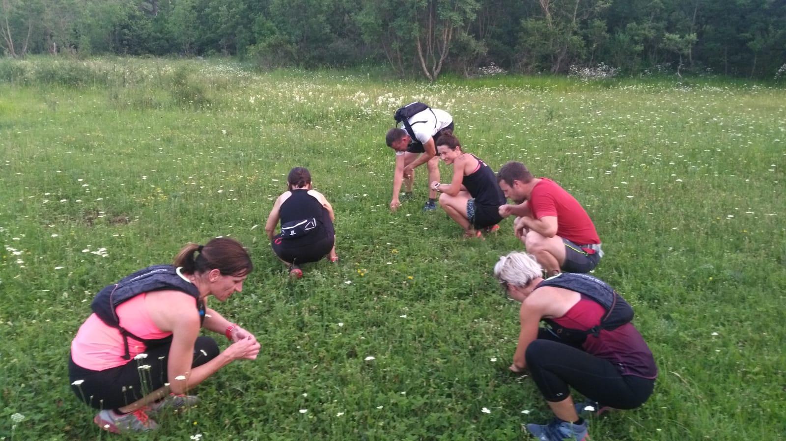 Trenutno pregledavate 2. trening: Berba šumskih jagoda..